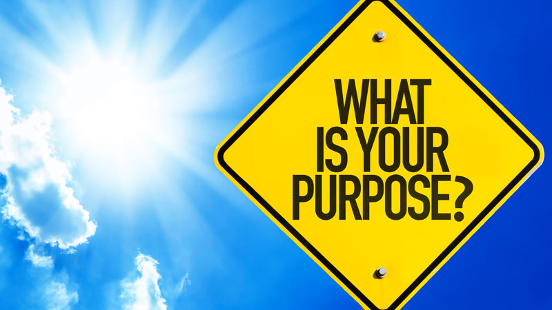 What-is-your-purpose