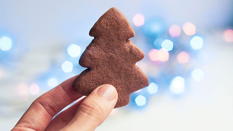 cookie-christmas-tree-in-hand