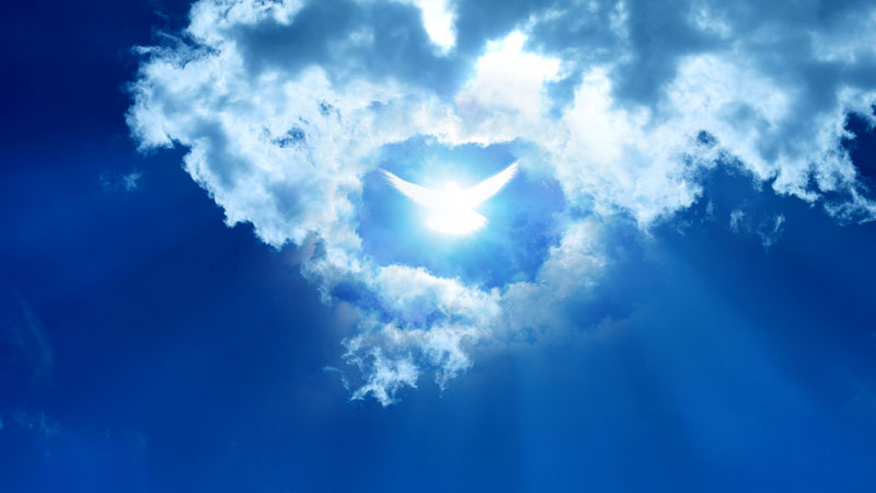 glowing-dove-in-clouds